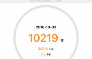 10月3日の散歩記録