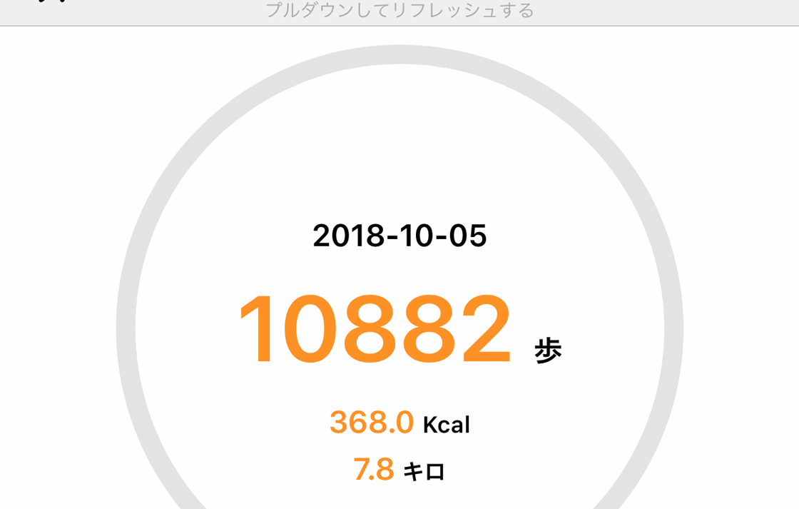 10月5日の散歩記録