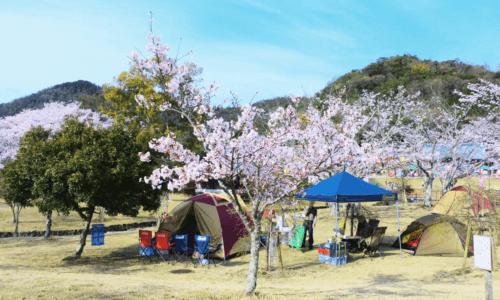 滋賀県へ花見キャンプ